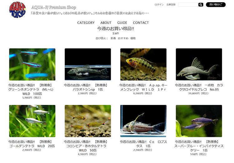 今週のお買い得品!! _ AQUA-F東京店通販ショップ - Google Chrome 2021_08_16 23_41_47