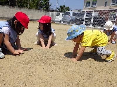 ぺんぎん組 砂の山1