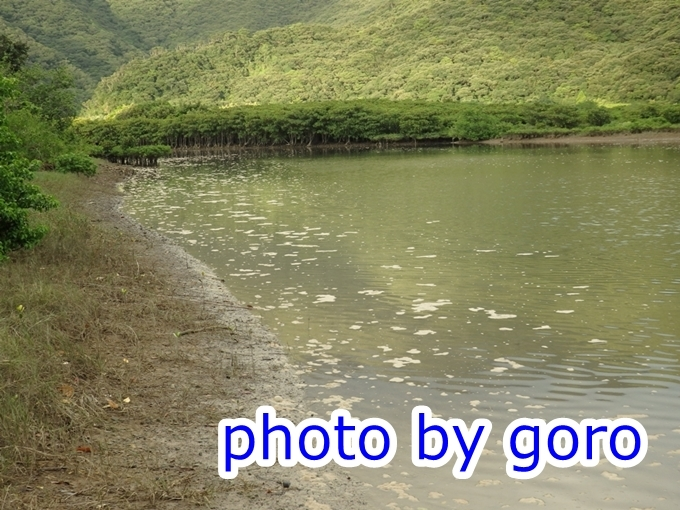 P9140039.jpg