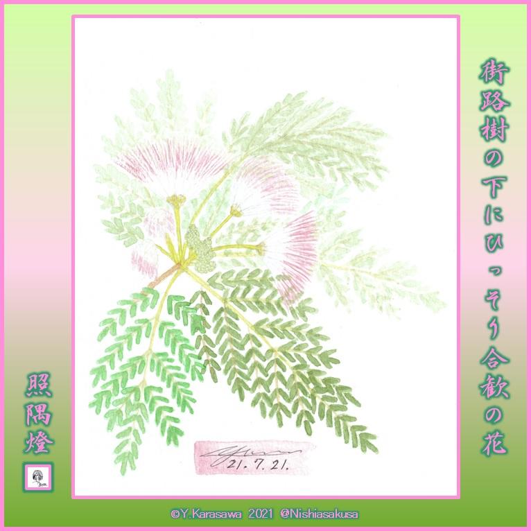 210721合歓の花LRG