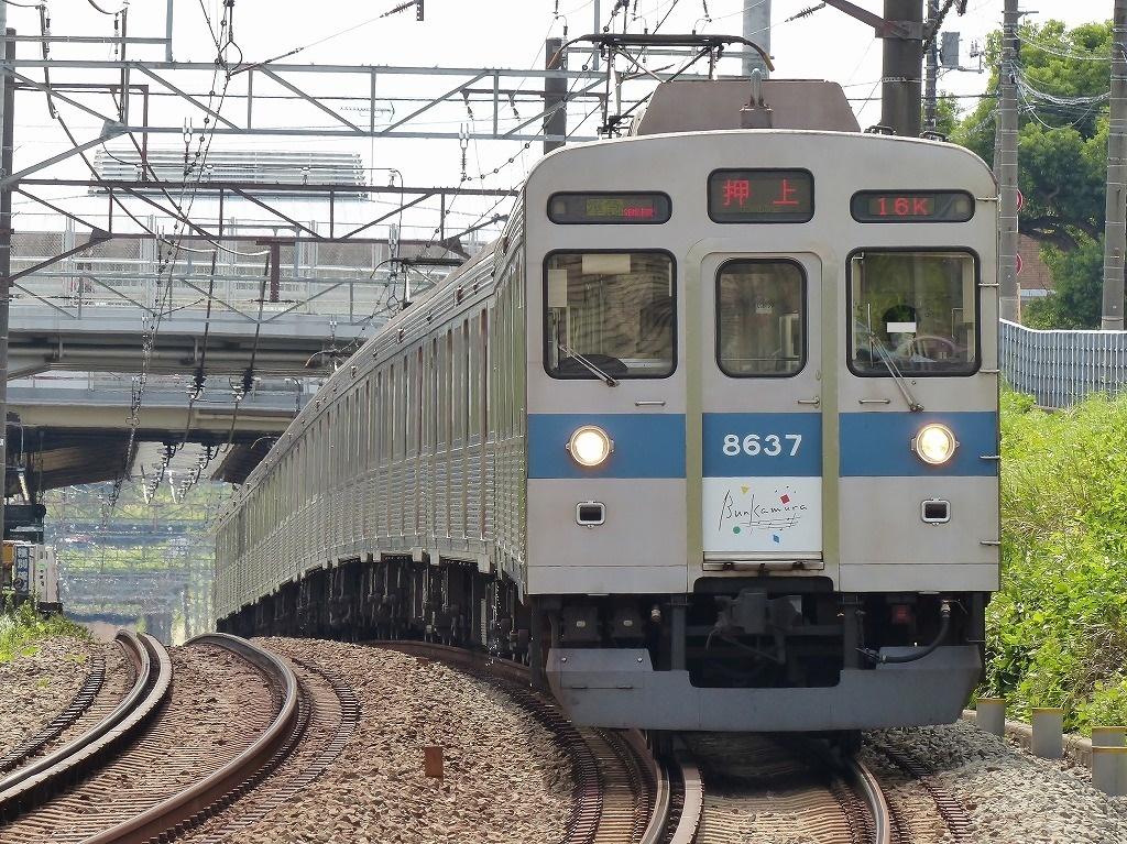 P1540949-2.jpg