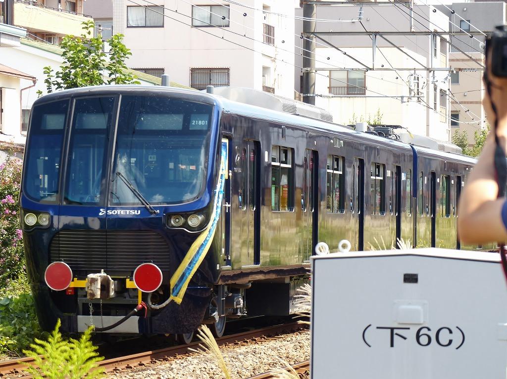 P1550080-2.jpg