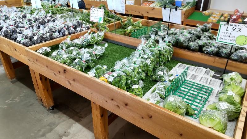 道の駅たくみの里新鮮野菜2109
