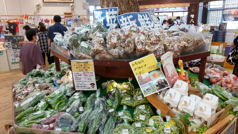 道の駅みなかみ水紀行館新鮮野菜2109