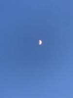 月IMG_4533