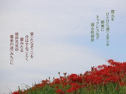 秋彼岸 - コピー