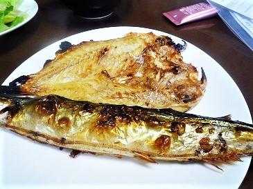 秋刀魚と小鯛