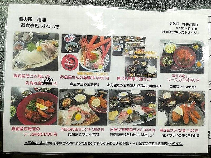 kaneichi2-echizen-005.jpg