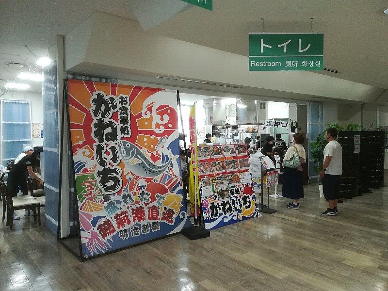 kaneichi2-echizen-019.jpg