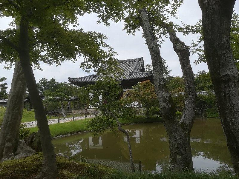 koudaiji-kyoto-028.jpg
