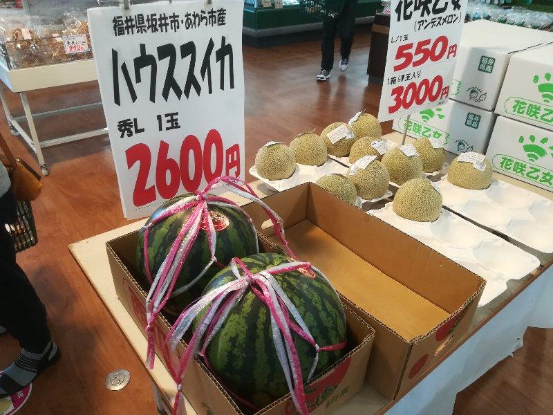 michinoeki2-mikuni-004.jpg