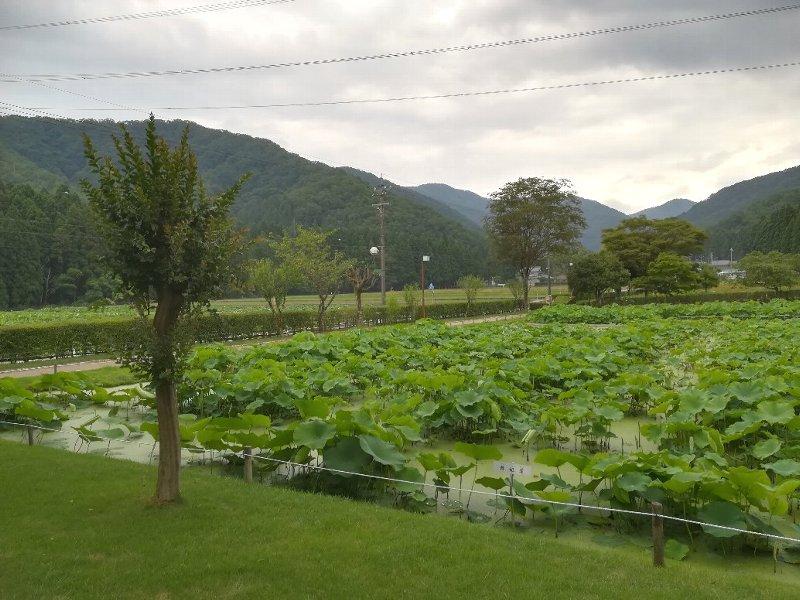 somoyamaonsen6-006.jpg