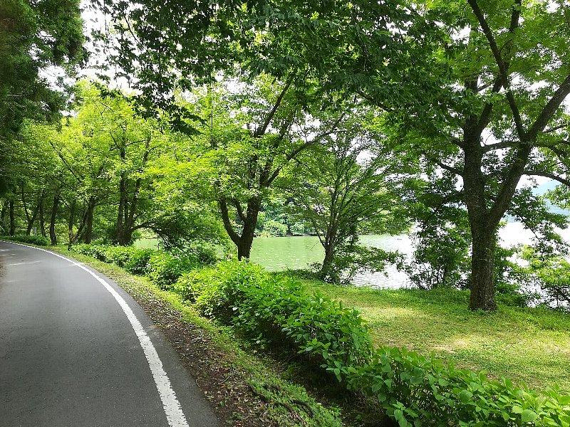yogoko2-nagahama-023.jpg