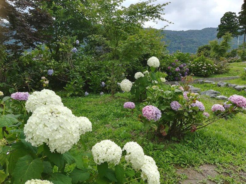 zenchoji-nagahama-047.jpg