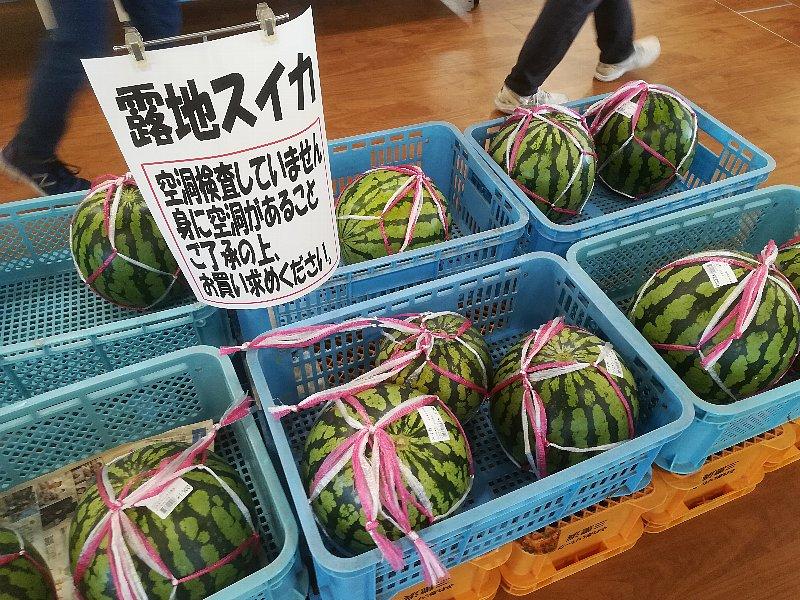 zenyasai-fukui-029.jpg