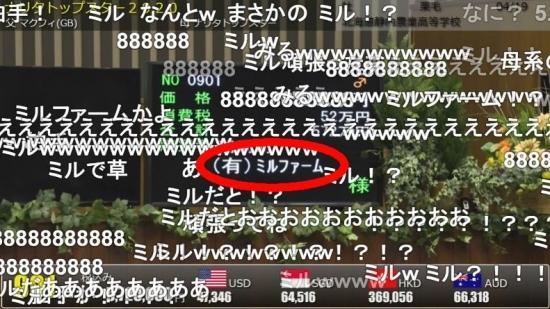 WS5164.jpg