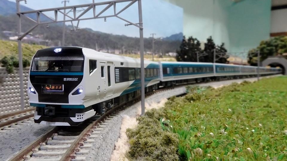 E257系2000番台「踊り子」