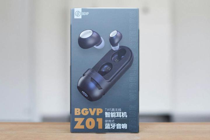 BGVP_Z01_01.jpg