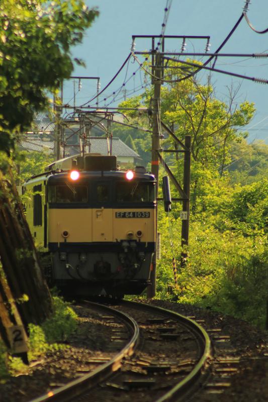 B56A0090.jpg