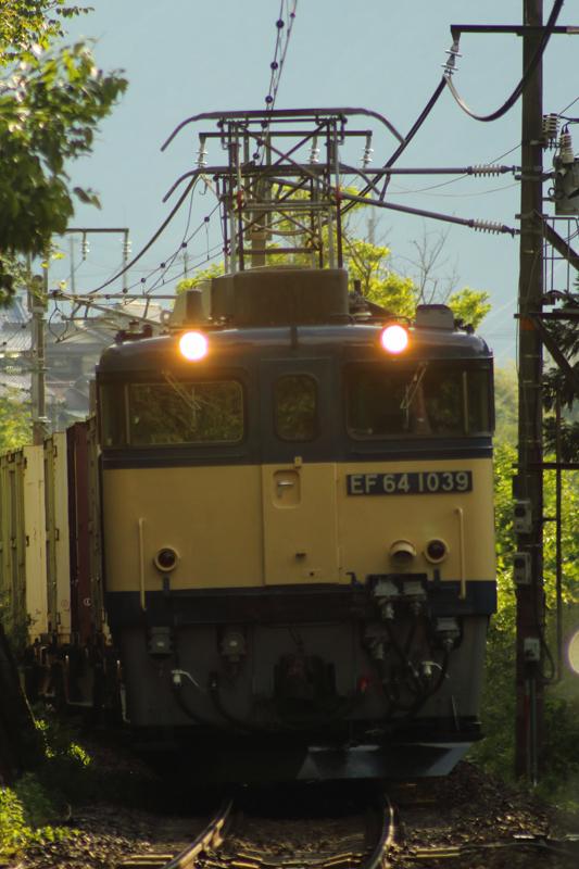B56A0099.jpg