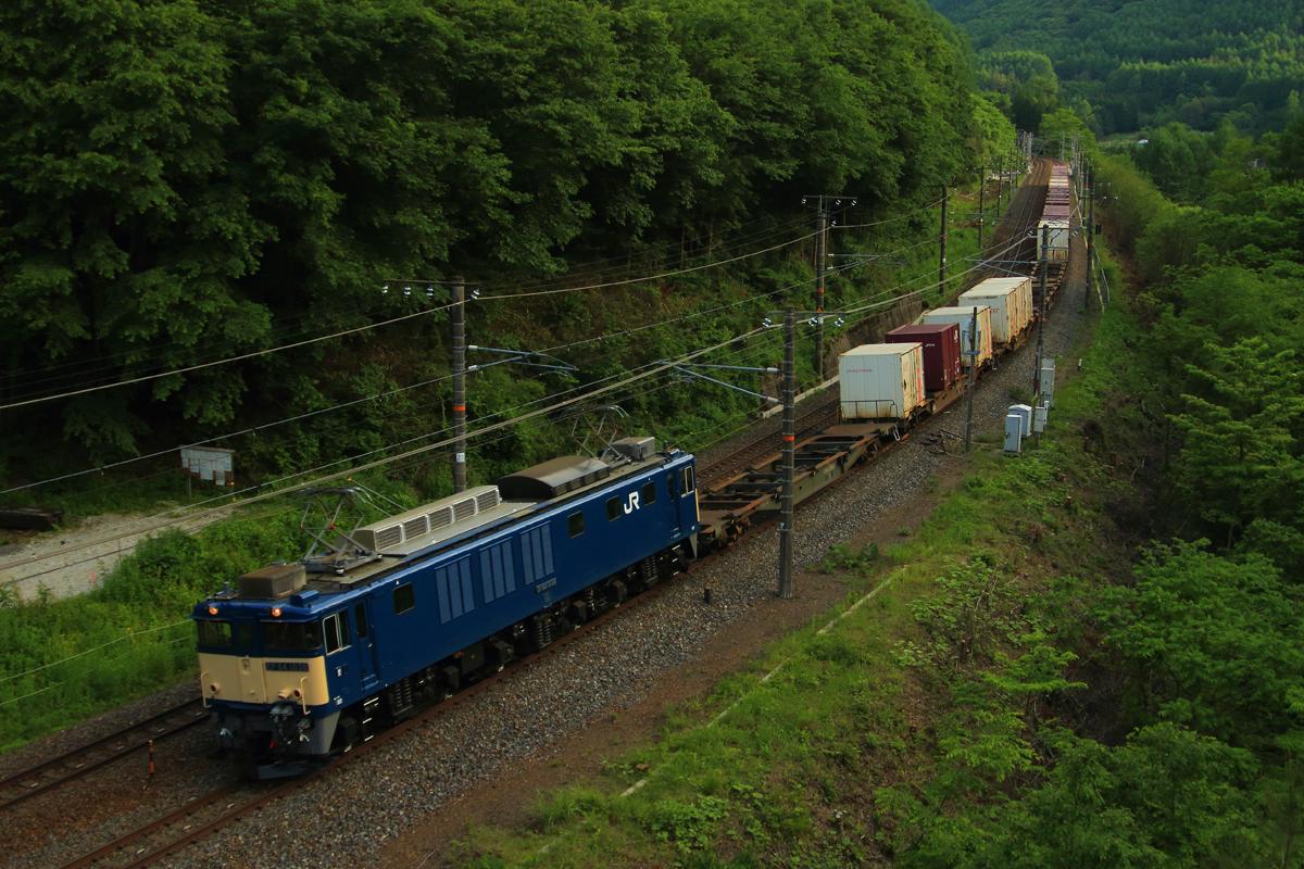 B56A0140.jpg