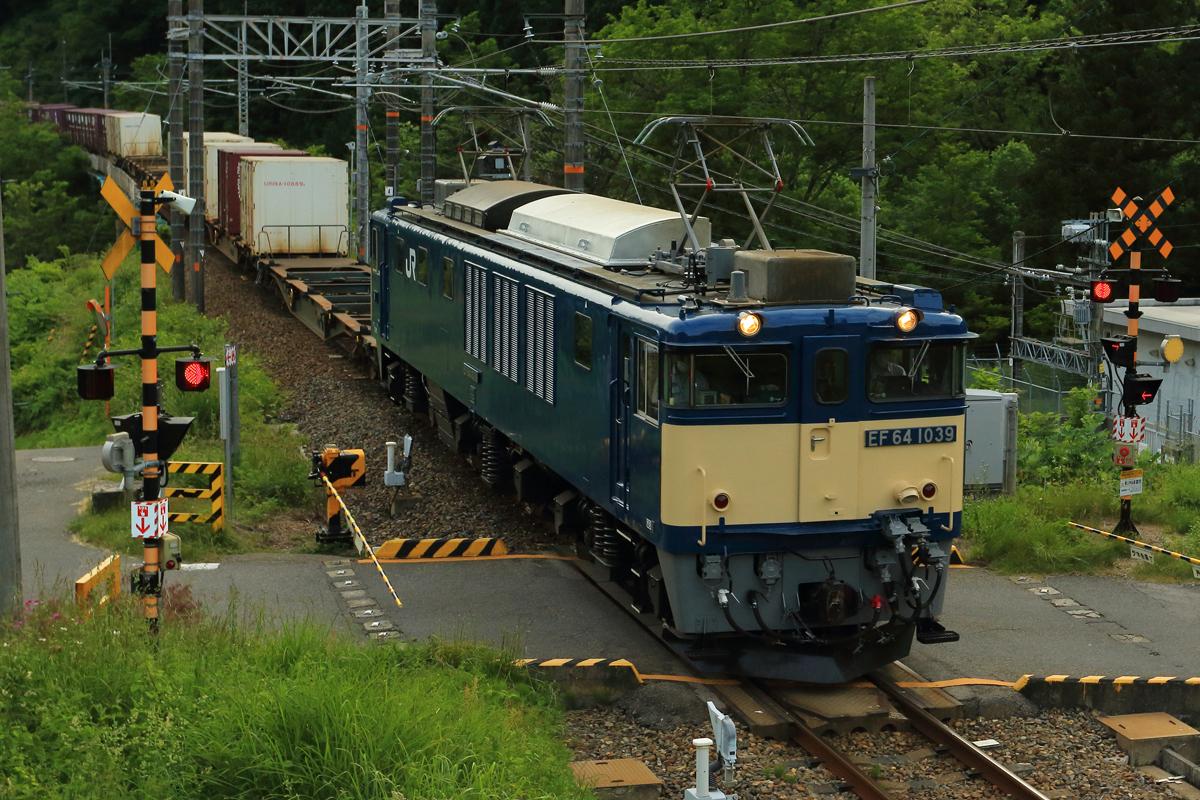 B56A0153.jpg