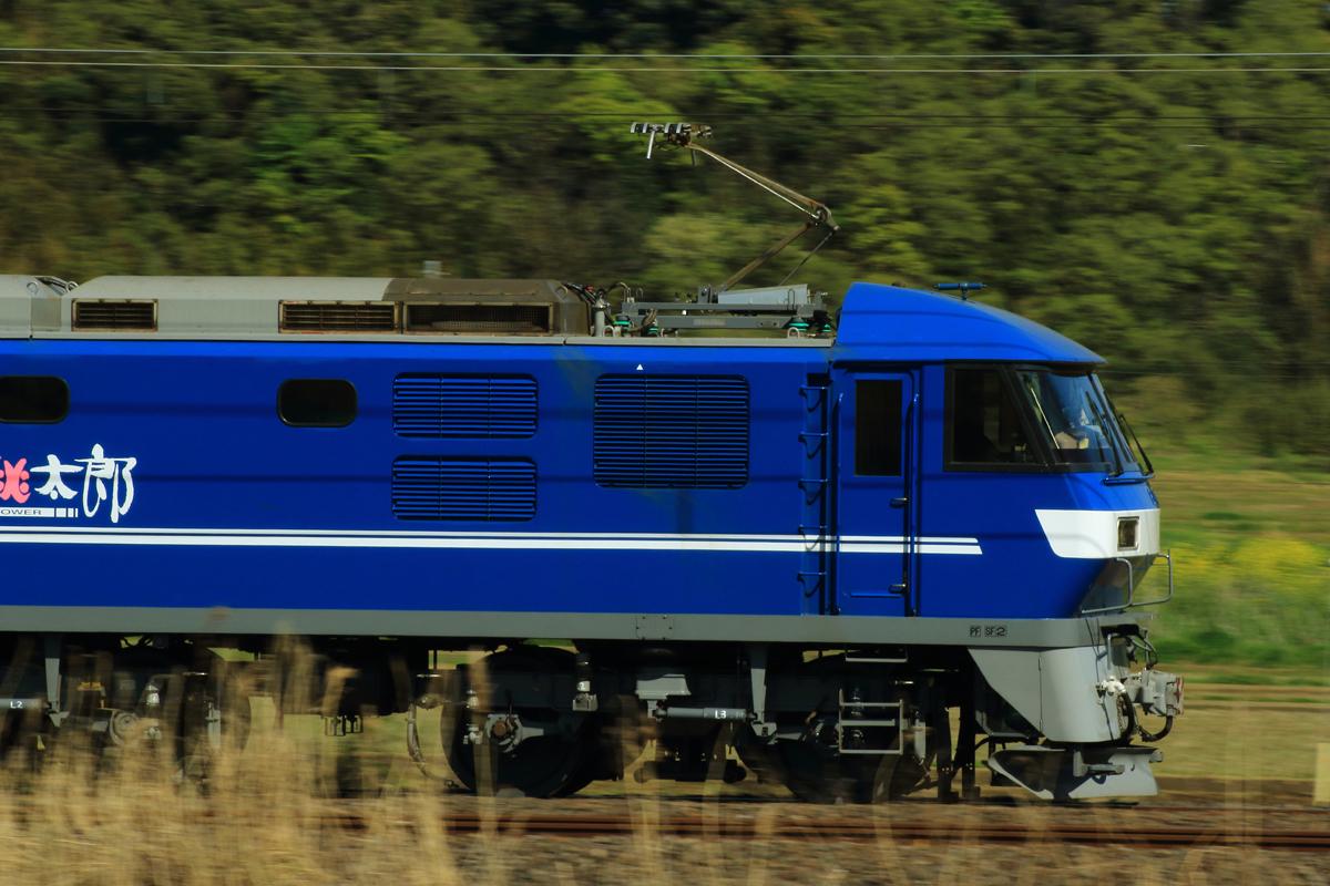 B56A8707.jpg