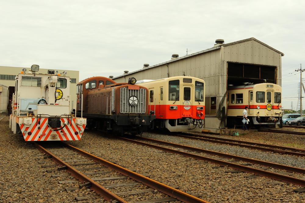 B56A9583.jpg