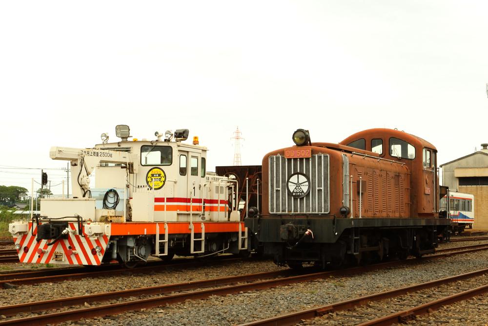 B56A9615.jpg