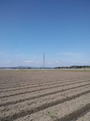 田植え2021