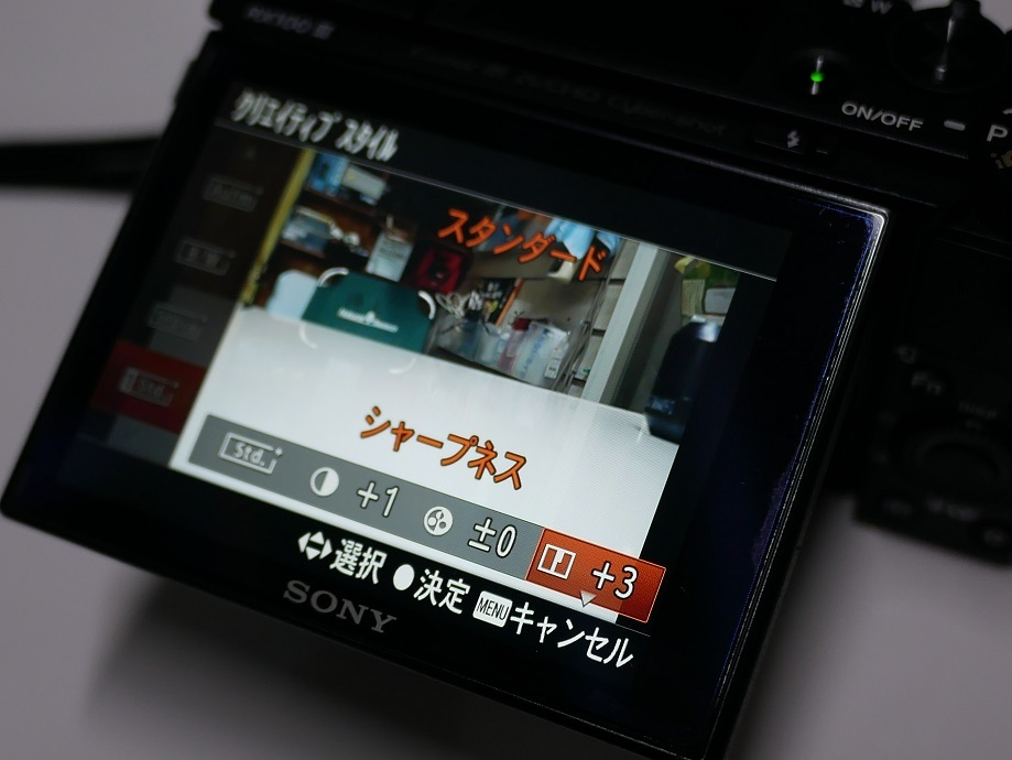P1100854.jpg